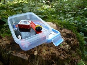 Geocaching ist ein tolles Hobby mit Kindern