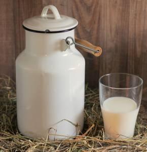 "Milch ""ab Hof"" - kann Asthma vorbeugen."