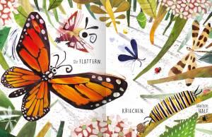 Insekten entdecken – toll illustriertes Kinderbuch.